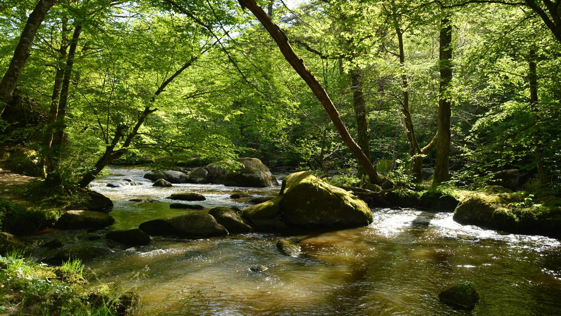 Site Corot et vallée de la Glane